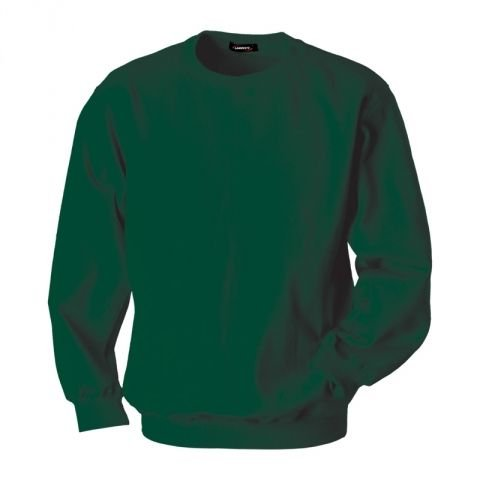 Sweatshirt, Male, Green, L, logo Garrett