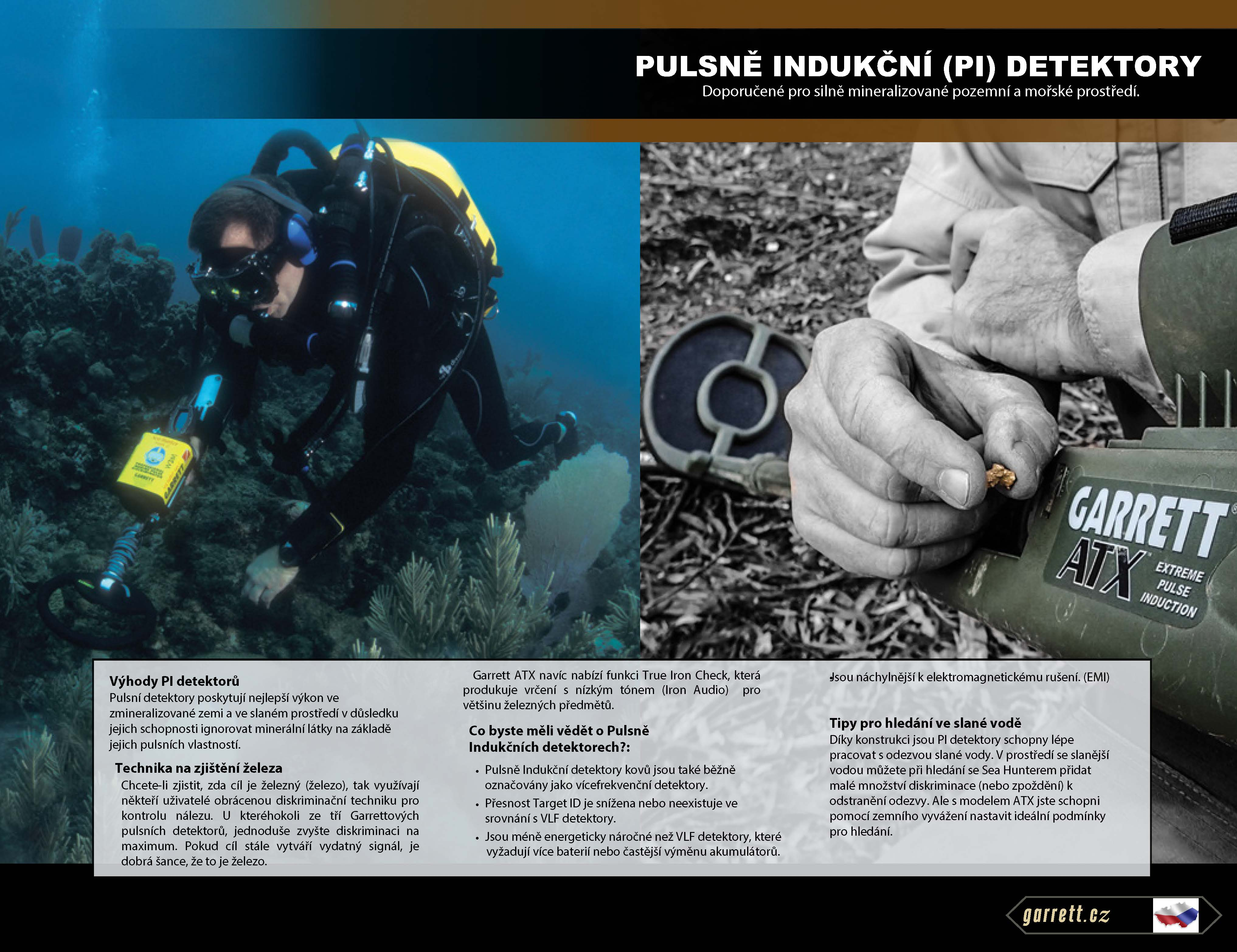 PI detektory